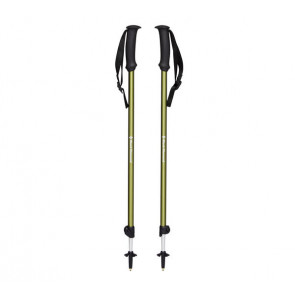 Kije trekkingowe Black Diamond TRAIL EXPLORER 2 Burnt Olive